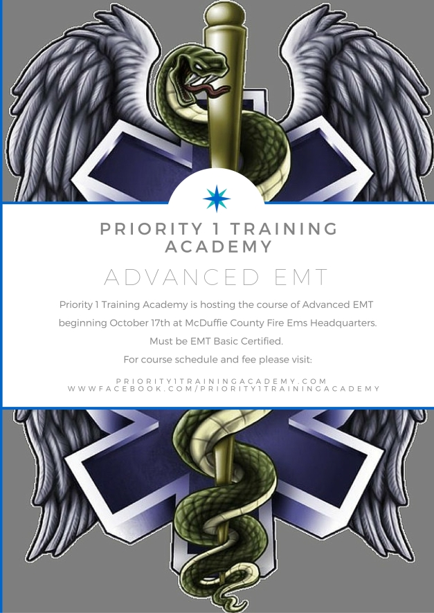 Priority 1 Training Academy (2) (2)